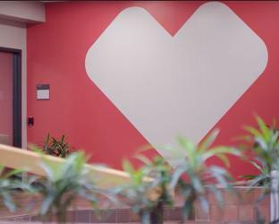CVS heart